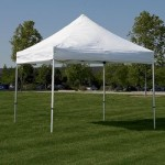 party canopy tents